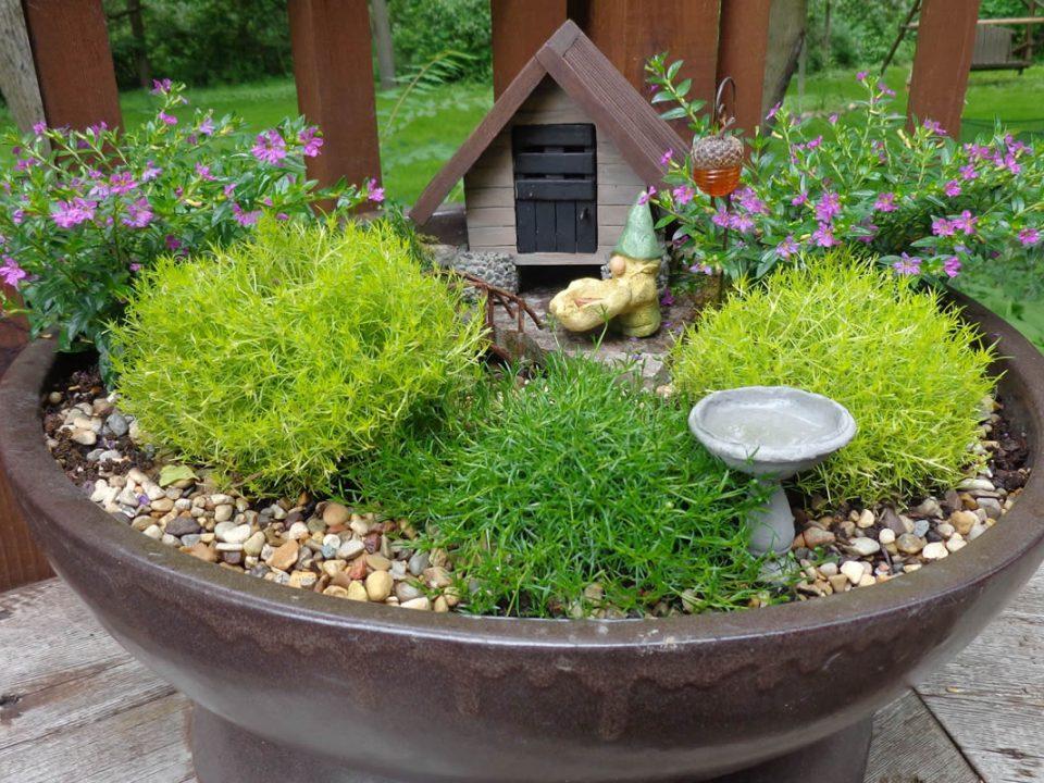 diseño de mini jardines lima peru