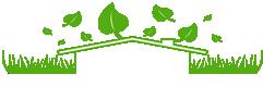 Irrigarden Perú Jardines Verticales Techos Verdes Riego Tecnificado