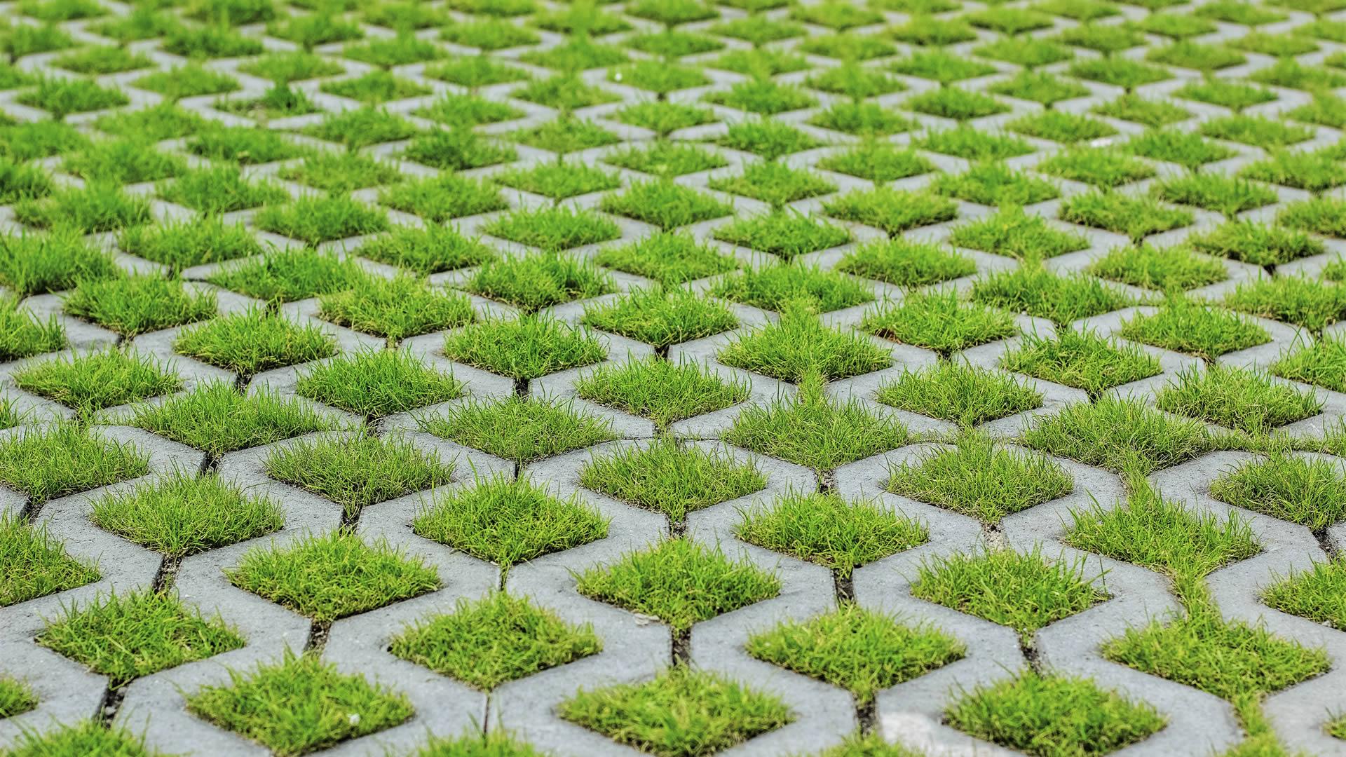 block grass