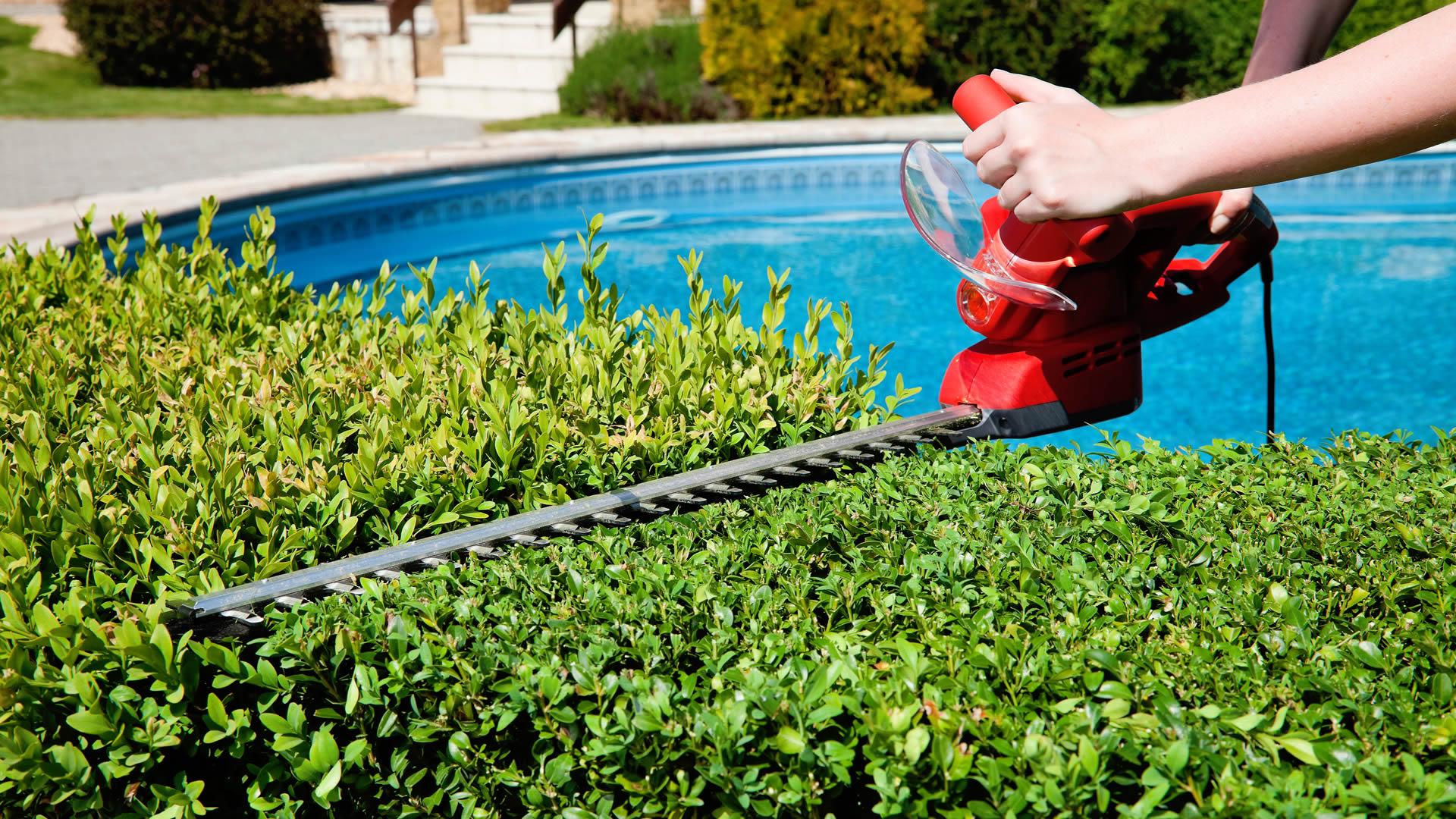 mantenimiento de jardines lima peru